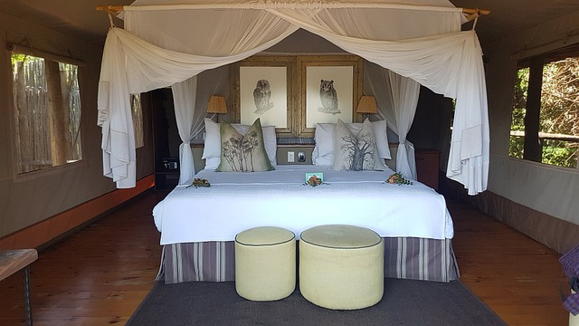 Safari tent, Pafuri Camp.
