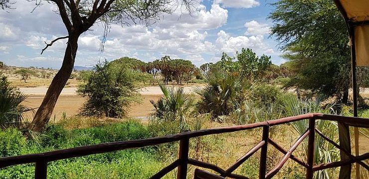 View of the unusually dry Ewaso Nyiro river from the tent in April 2019