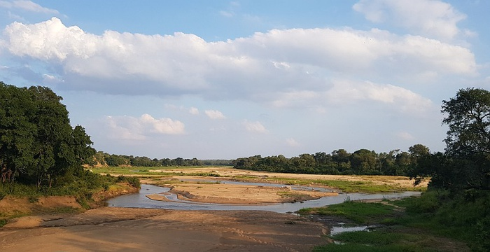 Southern Kruger scenery.